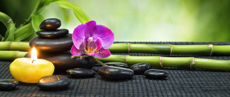 Bamboo-Bkground-1.jpg