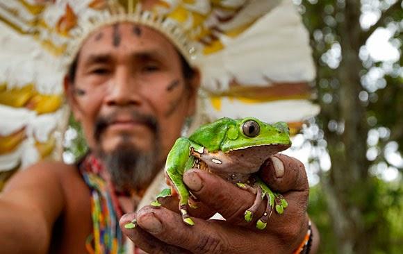 Patxi-02-Amazonas.jpg
